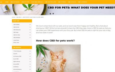 Moolay Media Agency for client BuyAnyCBD  - An article educating readers on CBD for pets on Shopify.