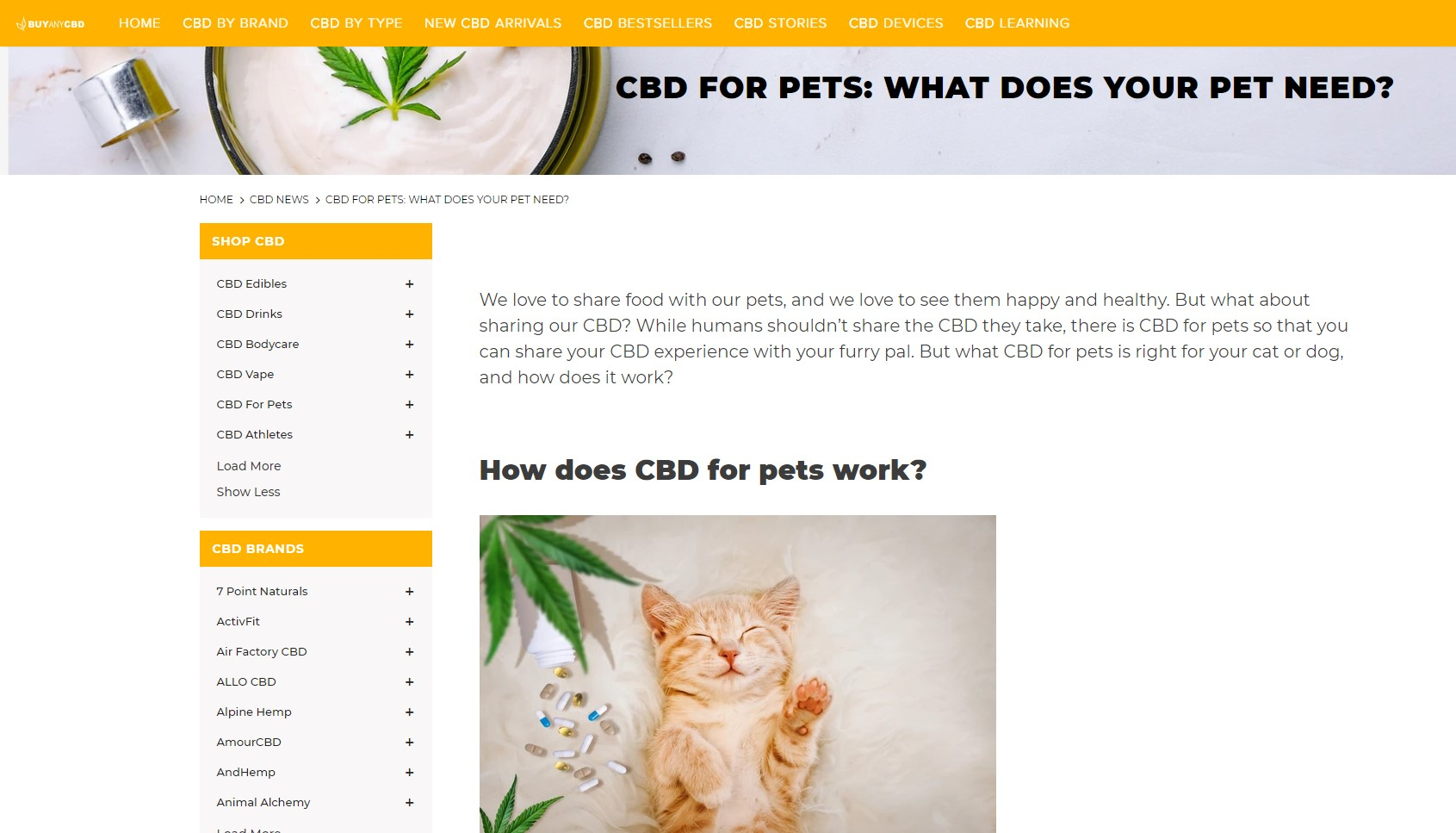 cat blog cbd